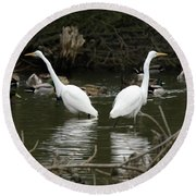 Pair Of Egrets Round Beach Towel