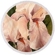 Round Beach Towel featuring the painting Pair Of Peach Iris  by Laurie Rohner