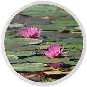 Pair Of Pink Pond Lilies Round Beach Towel
