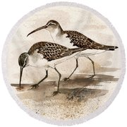 Pair Of Sandpipers Round Beach Towel