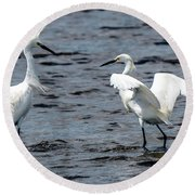 Pair Of Snowy Egrets Round Beach Towel