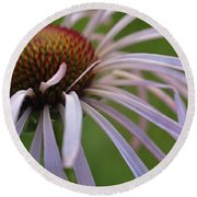 Pale Petals Round Beach Towel