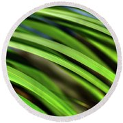 Round Beach Towel featuring the photograph Palm Abstract By Kaye Menner by Kaye Menner