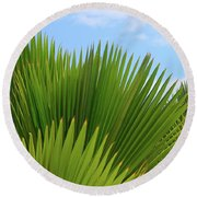 Palm Fans Round Beach Towel