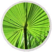 Round Beach Towel featuring the photograph Palm Frond by Bonnie Muir