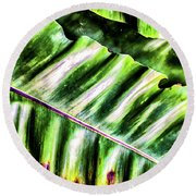 Palm Fronds Up Close Round Beach Towel