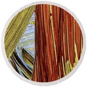 Round Beach Towel featuring the photograph Palm Leaf Abstract by Ben and Raisa Gertsberg