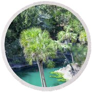 Round Beach Towel featuring the photograph Palm Tree Blue Pond by Raphael Lopez