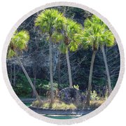 Round Beach Towel featuring the photograph Palm Tree Island by Raphael Lopez
