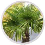 Palm Tree Just There Round Beach Towel