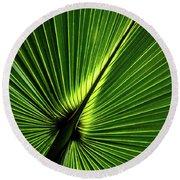 Palm Tree With Back-light Round Beach Towel