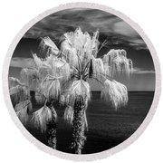 Round Beach Towel featuring the photograph Palm Trees At Laguna Beach In Infrared Black And White by Randall Nyhof
