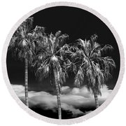 Round Beach Towel featuring the photograph Palm Trees In Black And White On Cabrillo Beach by Randall Nyhof