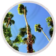 Palm Trees Looking Up Round Beach Towel