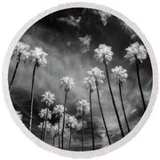 Palms Round Beach Towel by Sean Foster