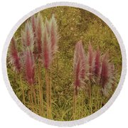 Round Beach Towel featuring the photograph Pampas Grass by Athala Carole Bruckner