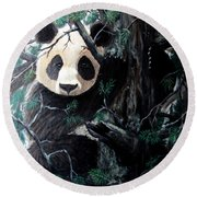 Panda In Tree Round Beach Towel