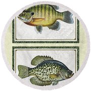 Panfish Id Round Beach Towel
