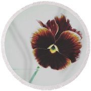 Pansy Face Round Beach Towel by Karen Stahlros