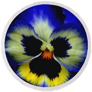 Pansy Face Round Beach Towel