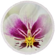 Pansy Orchid Round Beach Towel