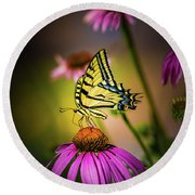 Papilio Round Beach Towel by Jeffrey Jensen