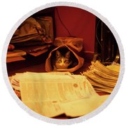 Parcel Cat Round Beach Towel