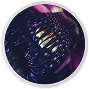 Round Beach Towel featuring the photograph Passiflora Alata - Winged Stem Passion Flower - Ruby Star - Ouva by Sharon Mau