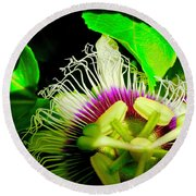 Passion Flower 2 Reflecting Round Beach Towel