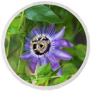 Passion Flower Betty Myles Young Round Beach Towel