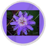 Passion Flower Bloom Round Beach Towel by Shirley Moravec