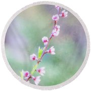 Pastel Painted Peach Blossoms Round Beach Towel