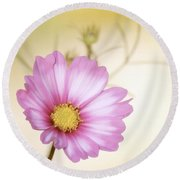 Pastel Petals Round Beach Towel by MTBobbins Photography