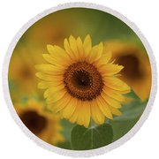 Patch Of Sunflowers Round Beach Towel
