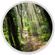 Path In Sunlit Forest Round Beach Towel