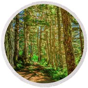 Path In The Trees Round Beach Towel
