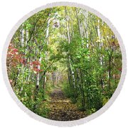 Path In The Woods 3 Round Beach Towel