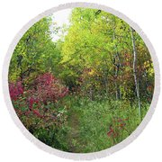 Path In The Woods 8 Round Beach Towel