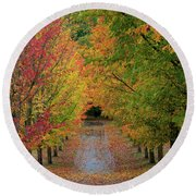 Path Lined With Maple Trees In Fall Season Round Beach Towel
