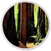 Path Through The Forest Edge . 7d5432 Round Beach Towel