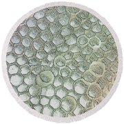 Pattern Or Abstract  Round Beach Towel