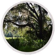 Paynes Prairie Border Round Beach Towel