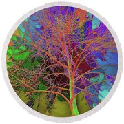 P C C Elm In The Wait Of Bloom Round Beach Towel