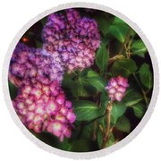 Round Beach Towel featuring the photograph Peace Garden - Purple Hydrangeas by Miriam Danar