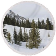 Peace In The Winter 3 Round Beach Towel