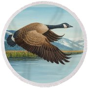 Peaceful Flight Round Beach Towel