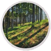Peaceful Forest 4 - Spring At Retzer Nature Center Round Beach Towel by Jennifer Rondinelli Reilly - Fine Art Photography