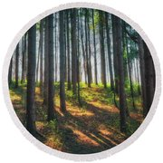Peaceful Forest - Spring At Retzer Nature Center Round Beach Towel by Jennifer Rondinelli Reilly - Fine Art Photography