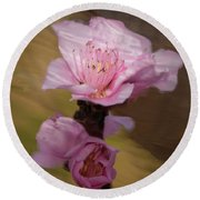 Peach Blossom Through Glass Round Beach Towel