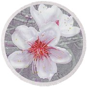 Round Beach Towel featuring the digital art Peach Blossoms by Jane Schnetlage